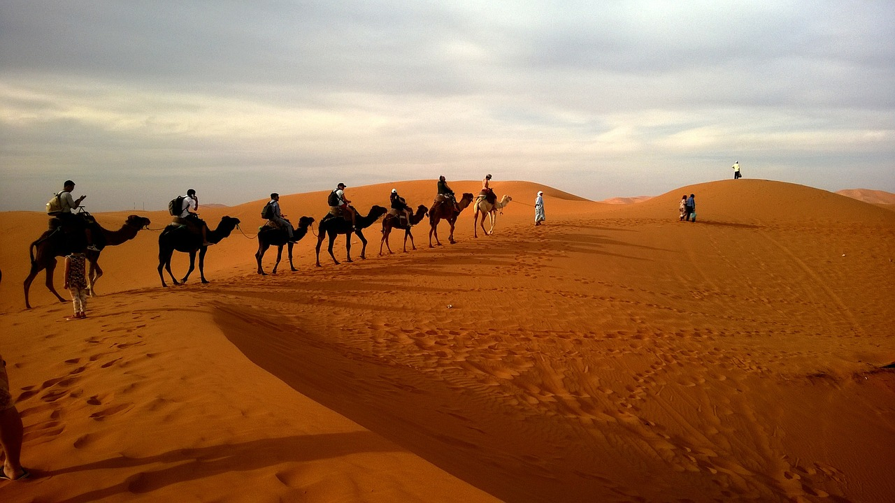 apes formation of deserts Apes syllabus course description  formation of deserts explain factors in the existence and location of earth's deserts analyze atmospheric, geographic, and.